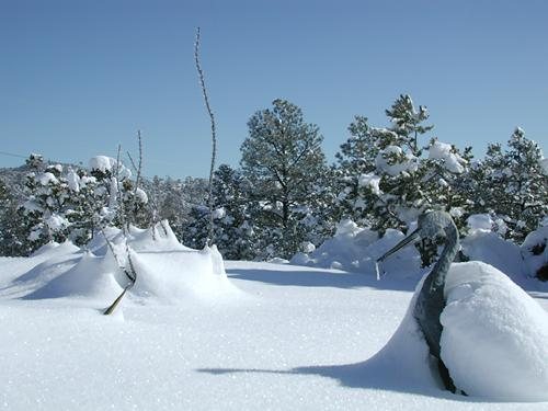 picture of record snow in canada de los alamos